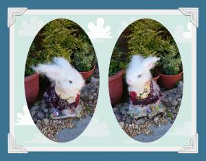 powertex white rabbit