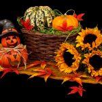 Powertex Halloween Blog